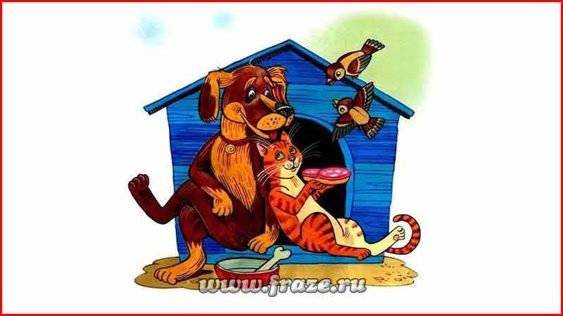 Как кошка с собакой — живут, общаются недружно, постоянно ссорясь, ругаясь.