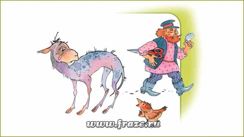 Image result for с паршивой овцы хоть шерсти клок