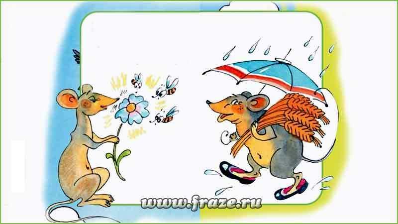 Весна красна цветами, а осень — плодами — всему своё время. У природы нет плохой погоды.